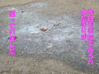 komusan_0113_001