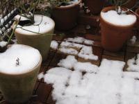初雪。。。あまり積もらなかったね