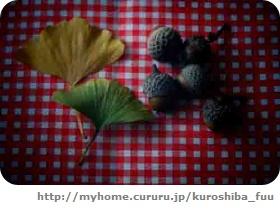 image3395687.jpg