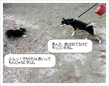 image3708160.jpg