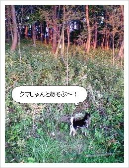 image4307986.jpg