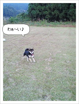 image5955385.jpg