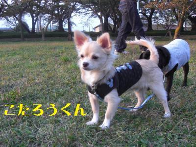 10_20091020100310.jpg