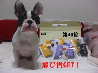 17_20091115011009.jpg