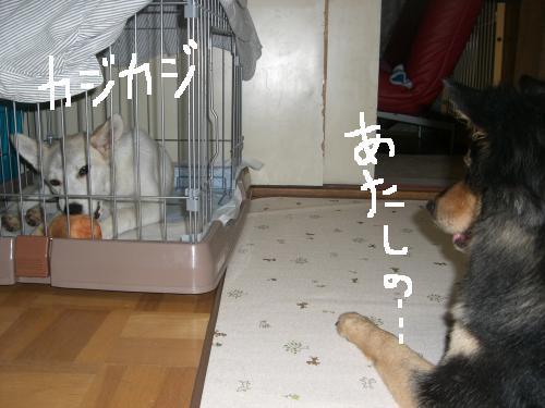 006_convert_20110826000546.jpg