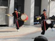 桜エイサー2