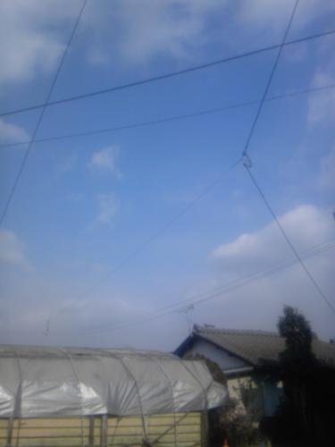 20110129103804.jpg