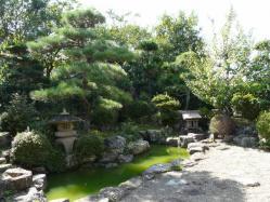 20101012植木