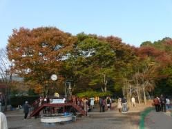 20101112福知山動物園紅葉2