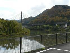 20101116紅葉~♪3