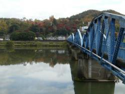 20101116紅葉~♪