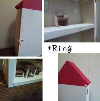 Ring+.jpg
