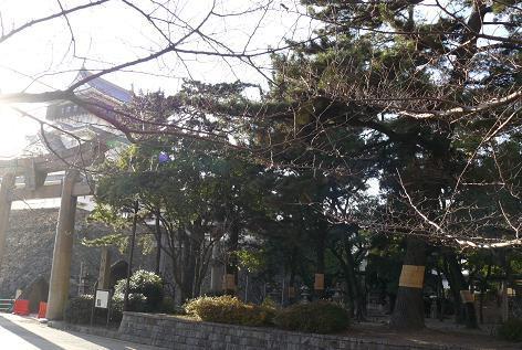 小倉城周辺♪