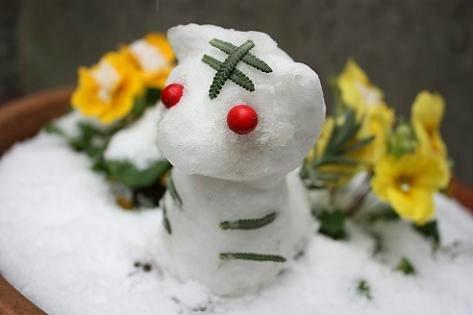 雪だるまでトラ!?