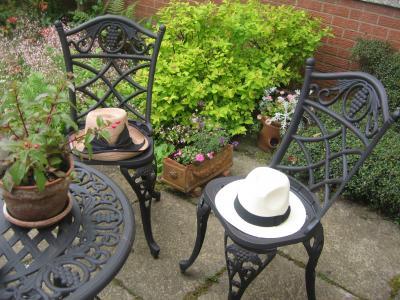 Hats+in+a+garden_convert_20110625050150.jpg