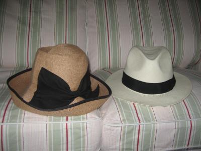 Hats_convert_20110625044938.jpg
