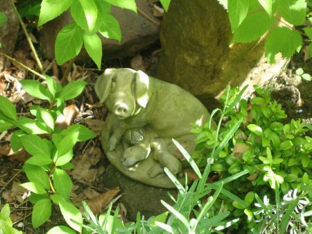 Pigs+in+a+garden_convert_20110625050742.jpg
