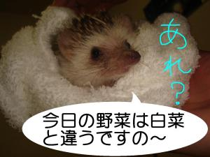 kyounoyasai_300.jpg