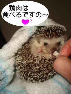 toriniku_300.jpg