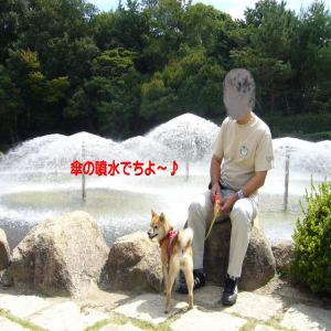 P1000059_convert_20090910213843.jpg