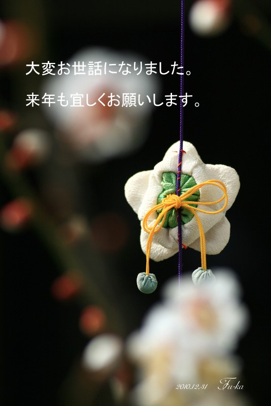 IMG_5977-1.jpg