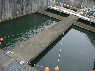 平成21年9月18日水道モニター1