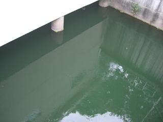 平成21年9月18日水道モニター2