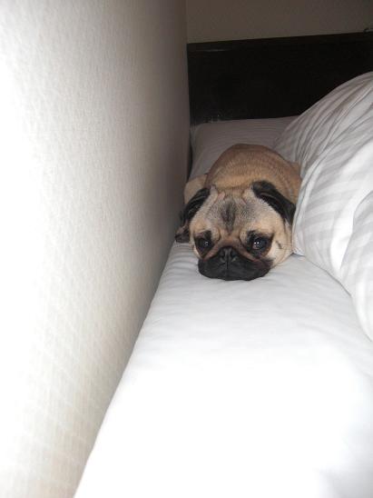 ベッドの片隅