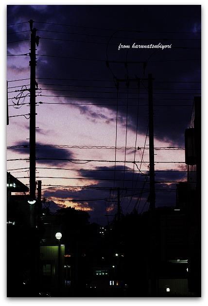 20110909-1.jpg