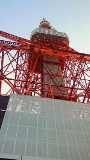 東京タワー(真下)