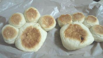 肉きゅう(パン)