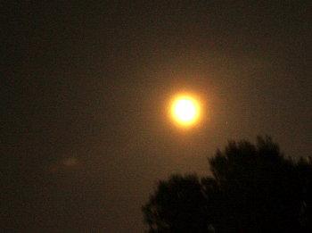 moon1109.jpg