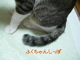 200911079.jpg