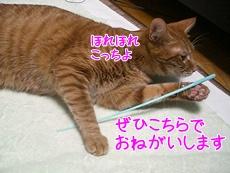 200911112.jpg