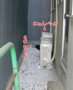 200911142.jpg