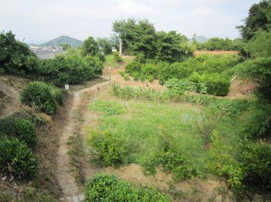 上ノ郷城跡