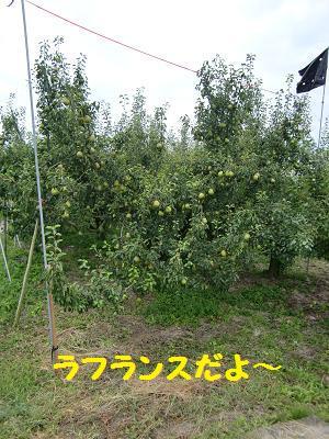 CIMG5560.jpg