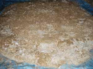 アミノ酸肥料