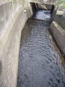 用水路水いっぱい