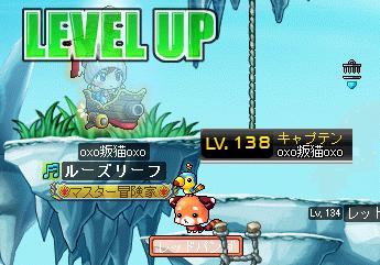 Maple001_20110817102150.jpg
