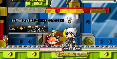 Maple002_20110826091150.jpg