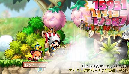 Maple003_20110813100417.jpg