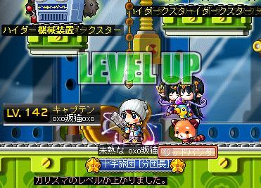 Maple008_20110826091201.jpg