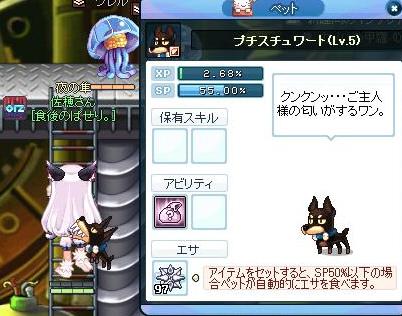 SPSCF0009_20110131112011.jpg