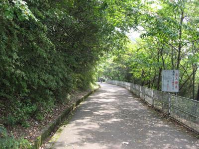 滝畑ダム管理道001
