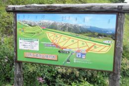 白馬五竜高山植物園標識版