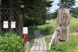 野草園入り口