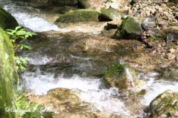 渓流沿いを歩く1a