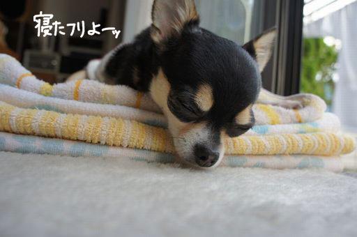 寝たふり5