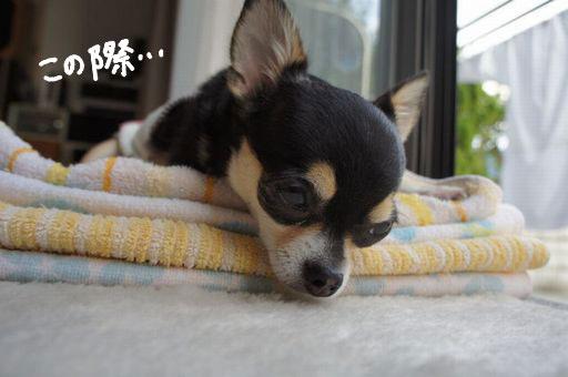 寝たふり4